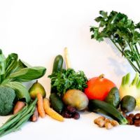 Guest Post: Nutrient Rich Paleo by Alex of Dig Primal