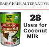 28 Uses for Coconut Milk: The Ultimate Dairy Alternative